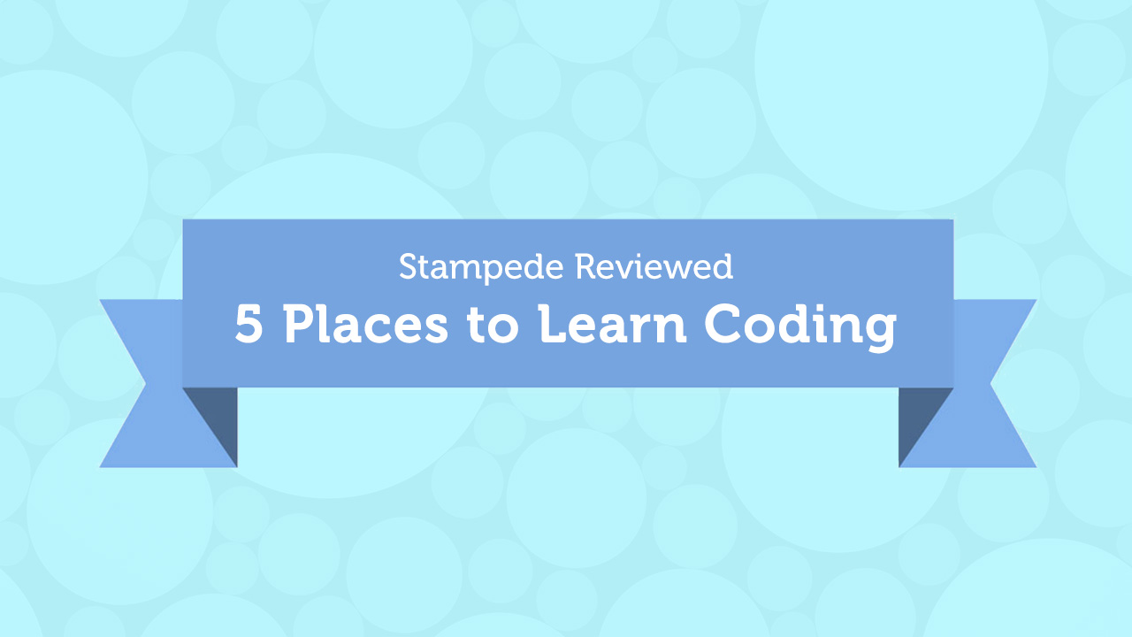 Stampede Reviewed: Five Places to Learn Coding